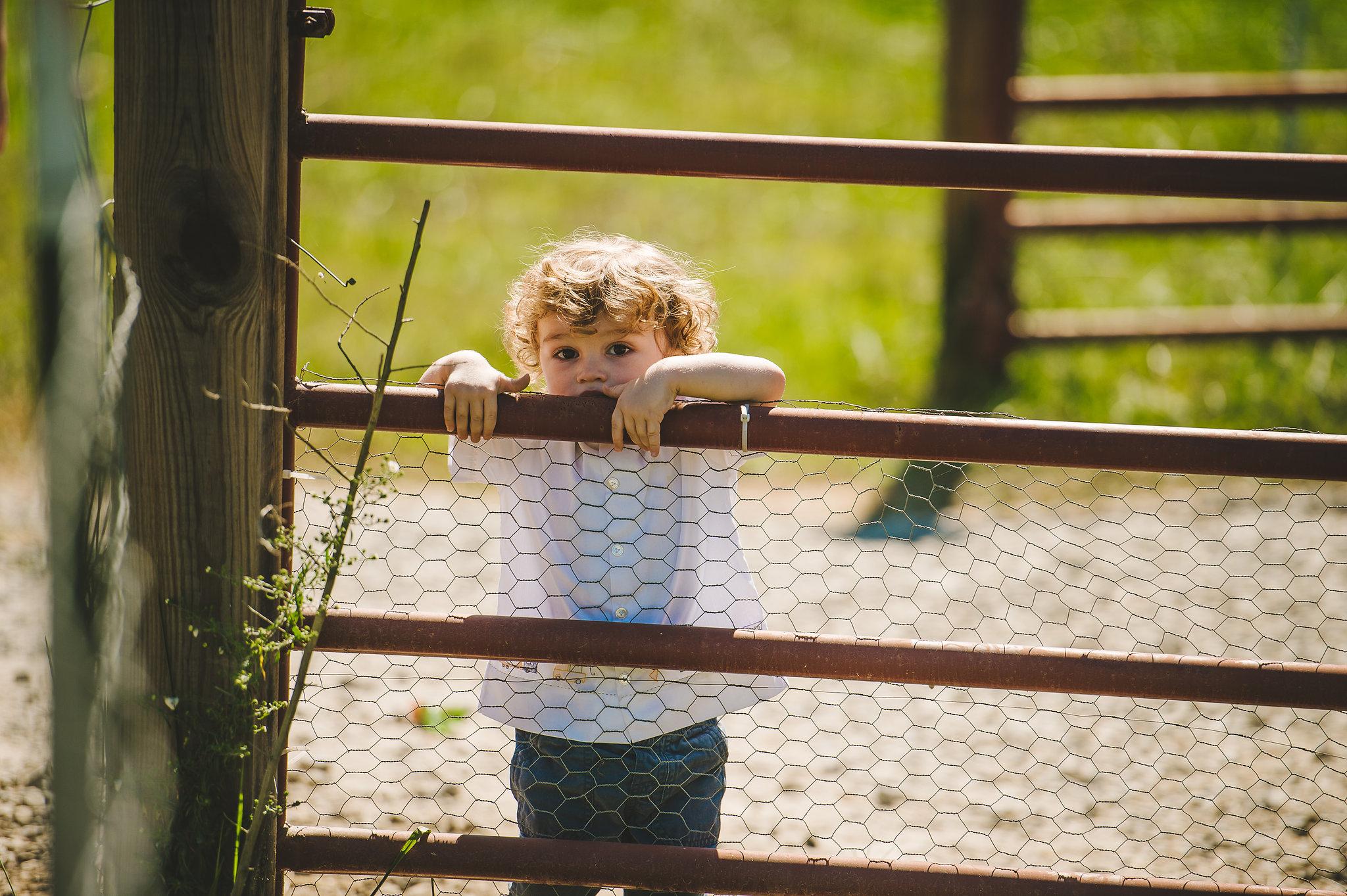 Summer farm wedding guest